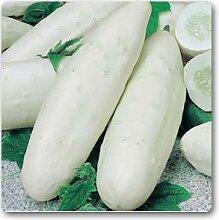 Gurke F1 weiß Lang - Gemüsesamen, 100 Samen/pack