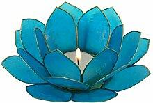 Guru-Shop Lotus Teelicht Muschel 14 cm, Himmelblau, Farbe: Himmelblau, Deko Teelicht, Teelichtgefäße