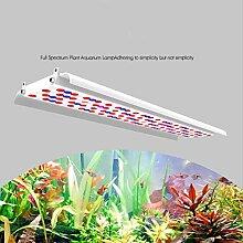 Gymqian LED Grow Lampe 10W, Premium Plant