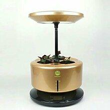 GZD Mikro wachsen Licht Garten automatische Pflanze Wachstum Maschine intelligente Pflanzmaschine vergossen Soilless Anbau Anlage Kontrolle Leistung 28W Größe 35-40CM , gold
