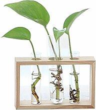 GZQ Pflanzenhalter Glasvase Blumenkübel