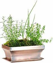 H Potter rechteckig Sukkulente, Garten Topf Blume