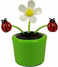 HAAC 4er Set Solar Wackelblume Blume mit 2