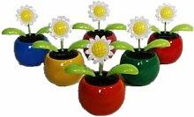 HAAC 4er Set Solar Wackelblume Blume Motiv