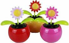 HAAC Solar Wackelblume Blume Motiv Sonnenblume