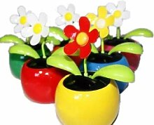 HAAC Solar Wackelblume Blume