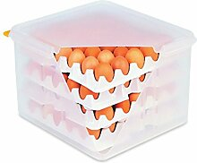 HACCP Eierbox aus Polypropylen mit OPTIONALER