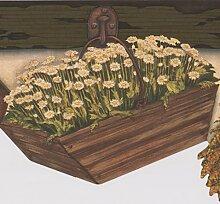 Hängekörbe Mit Weiß Blumen Blackberry Farmhouse