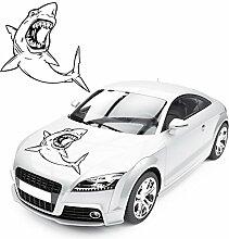 Hai Aufkleber Shark Motiv Sticker für das Fahrzeug Weißer Hai Autotattoo Tierwelt  KB371