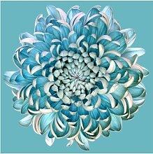 Halbglänzende Tapete Blaue Chrysantheme East