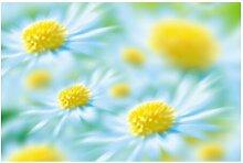 Halbglänzende Tapete Blumen Daisy East Urban Home