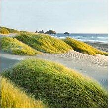 Halbglänzende Tapete Dünen und Gräser am Meer