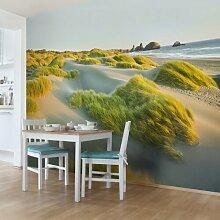 Halbglänzende Tapete Strand Dünen und Gräser am