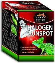 Halogen Sunspot 50 Watt - Halogen Sun Spot Spotstrahler Wärmestrahler