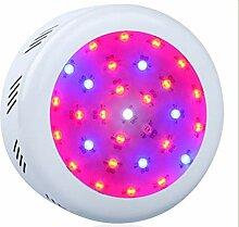 Hanchen 50W LED Pflanzenlampe für Innen
