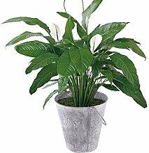 Happyyami Rustikale Metall Blume Vase Shabby Chic