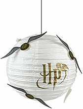Harry Potter - Lampenschirm - Papierlampe - Der