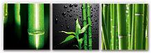 Hartschaum Bilder - Wandbild Bambus-Set -