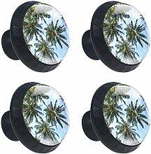 Hawaii-Kokosnussbaum 4 Stück Schubladenknöpfe
