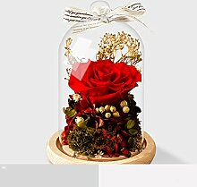 HCP ZSH Ewige Blume Geschenkbox Glas stieg Blumen