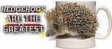 Hedgehog CERAMIC MUG 10fl oz (half pint) Image #