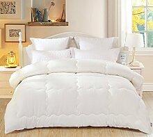 Heimtextilien Antibakteriell Vier Löcher Winter-Quilt Bett Auskleidungen ( farbe : # 1 , größe : 150X210cm )