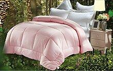 Heimtextilien Quilt Anion Eindickung Quilt Kern Doppel Quilt Halten Sie die warme Winter Quilt Bett Auskleidungen ( farbe : # 2 , größe : 220x240cm )