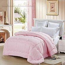 Heimtextilien Stricken Prägen zehn Löcher Eindickung Winter-Steppdecke Doppel Quilt Kern Quilt Bett Auskleidungen ( farbe : # 1 )