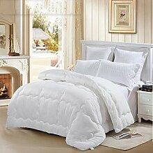 Heimtextilien Stricken Prägen zehn Löcher Eindickung Winter-Steppdecke Doppel Quilt Kern Quilt Bett Auskleidungen ( farbe : # 2 )