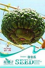 Heiße verkaufen4pcs Kürbiskerne, Kürbis Variety Samen, Big Green Kürbis-Samen, Garten Kletterpflanze Kostenloser Versand