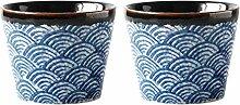 Hemoton 2 Stücke Keramik Japanische Sake Set