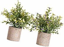 HEMOTON Künstliche Pflanze Mini-Plastikpflanzen