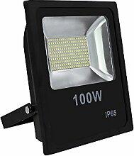 Hengda® 100w LED Fluter mit bewegungsmelder