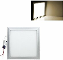 Hengda® High power LED Panel Ultraslim Warmweiß Neutralweiß Weiß 120x30cm 60x30cm 30x30cm SLIM Lampe Leuchte (30 X 30 CM, Warmweiß)