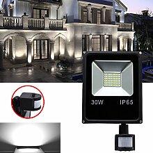 Hengda® LED Fluter mit Bewegungsmelder 30W