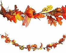 Herbst Kürbis Wandbehang Girlande: