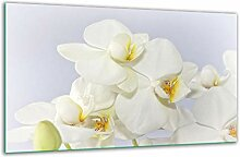 Herdabdeckplatte Ceranfeld 1 Teilig 80x52 Blumen