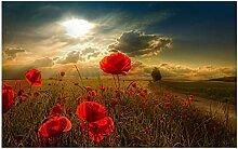 HGLLL Leinwandbilder Rote Mohnblumen Blumen