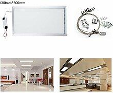 HIGH POWER 24w LED Panel 30 x 60cm Lampe und Wandleuchte Kaltweiß Schlafzimmer Wohnzimmer (24 Watts)
