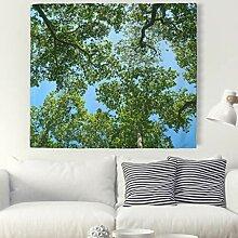 Himmel Baum Wald Wandteppich Natur Landschaft