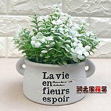 HL-HZH-Lila Blume Blumen Dekoration Wohnzimmer