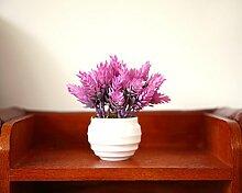 HL-PYL Garten Blumen Bonsai Pflanzen Dekorative Ornamente Heimtextilien Schmuck In Der Stube Fenster Simulation Kleiner Topfpflanzen Sukkulenten, E