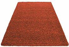 Hochflor Shaggy Teppich Wohnzimmer 3 cm Florhöhe