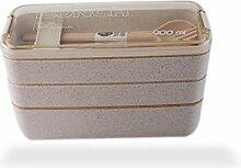 Hochwertige tragbare Familie Lunch Box 900 ml
