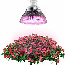 Höchste Effiziente Hydrokultur LED Grow Licht, Superdream® Plant Growing Lampe für Garten Gewächshaus (A, 24W, E27Schraube Base, 3Bands)