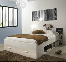 Hogsett Doppelbett mit Stauraum Brayden Studio