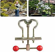 HOLEBAY-EU Garten-Bonsai-Werkzeuge, Bäume,