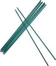 Holibanna 50Pcs Bambus Grüne Pflanze