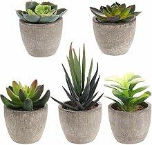 Holibanna 5PCS Künstliche Sukkulenten Pflanzen
