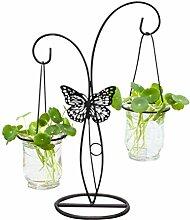 Holibanna Desktop Glas Pflanzer Hydroponik Vase